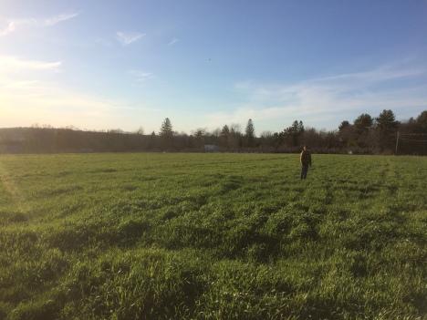 Upswing Farm Pano spring 16