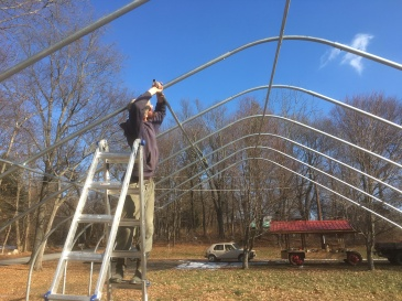 kenneth-greenhouse