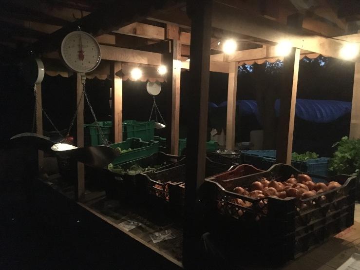 Fall Farmstand Lights